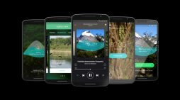 Wunderman Buenos Aires create an alarm that helps endangered native forests