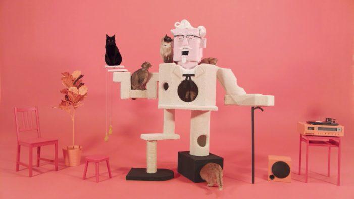 KFC's Bizarre Facebook Live Stream Attracts Around a Million Cat Lovers