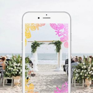 WeddingWire-Snapchat-Geofilters-for-Weddings-645x645