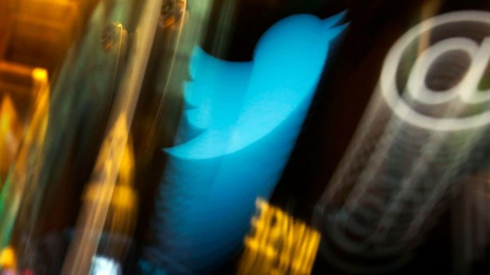 Twitter thinks its new ad format could reach 800 million people