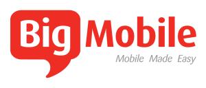 big-mobile-logo-300x128