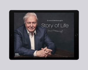 story-of-life