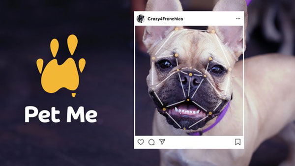 PetRescue launches dog obsessed AI via DDB Sydney to help pets get adopted across Australia