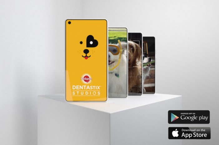 Pedigree Brand's Mission to Bring the Good Back to Social Media with Dogs