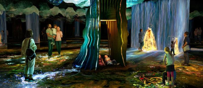 Pixel Artworks Illuminates McArthurGlen Designer Outlet Ashford with The Garden of Light